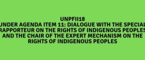 """UNPFII18: JOINT STATEMENT TO THE 18TH SESSION OF THE UN PERMANENT FORUM ON INDIGENOUS ISSUES ON """"CONSERVATION AND RIGHTS OF INDIGENOUS PEOPLES"""""""