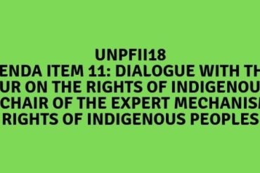 UNPFII-Item11-750x312